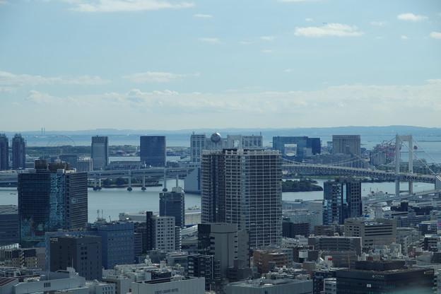 東京湾を一望に