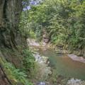 渓谷の洞門