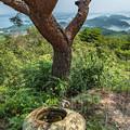 写真: 千巖山から