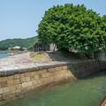 写真: 石積埠頭