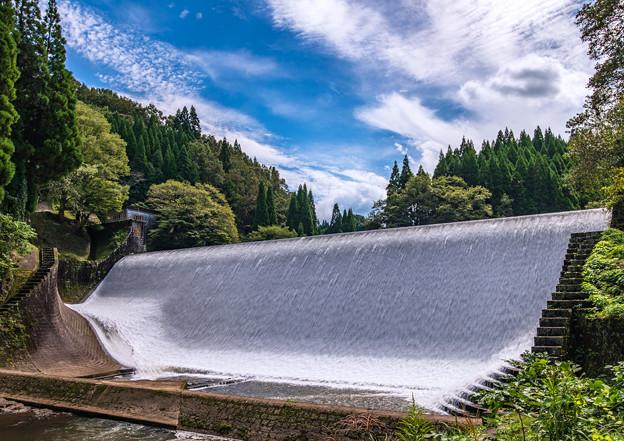 妖艶なダム