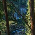 霧降(きりふり)の滝