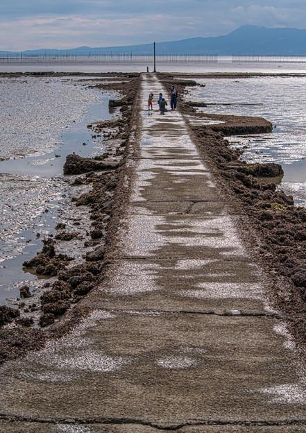 Photos: 海床路散策