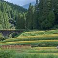 Photos: 石橋と田園風景