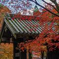 Photos: 黒門