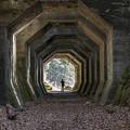 Photos: 八角形トンネル