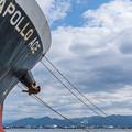 Photos: 内港の釣り人