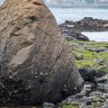 Photos: おっぱい岩