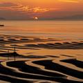 Photos: 湯島&島原半島の間に
