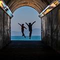 Photos: 海へ舞う