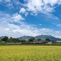 Photos: 南阿蘇のトロッコ列車