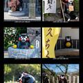 Photos: 日奈久のくまモンたち