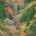 秘境の秋景を振り返る