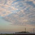 Photos: 朝の散歩コース