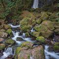 Photos: 白糸(しらいと)の滝