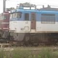 EF81-717 EF81-502