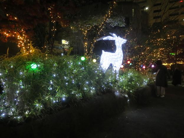 天神クリスマスマーケット 7