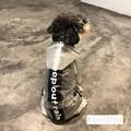 Photos: 小型犬/中型犬 レインコート オシャレ