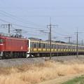 配9749レ EF81 136+209系八ミツC506編成 10両