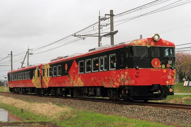 8012D キハ48-4+キハ48-1004「花嫁のれん」
