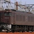 単9783レ EF64 37