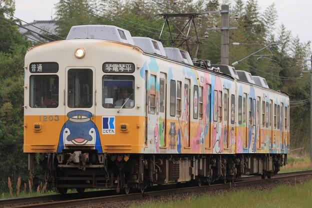 19レ 高松琴平電鉄1200形1203F 2両