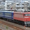 回9890レ EF81 81+12系 3両