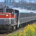 9485レ DE10 1729+東急2020系2126F+6020系デハ6321 10両