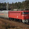 BS9P7489