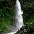 写真: 雨滝