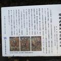 「堀部安兵衛の碑」説明板