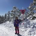 志賀高原スキー