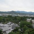 天秤櫓から佐和山(城跡)が見えました