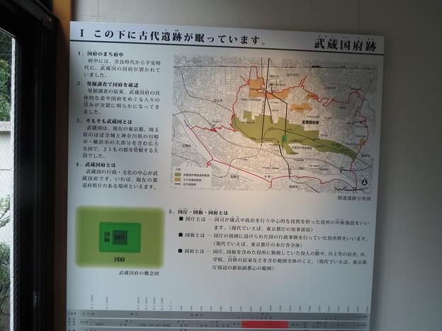武蔵国府跡1
