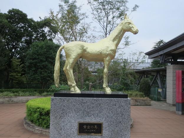黄金の馬・アハルテケ