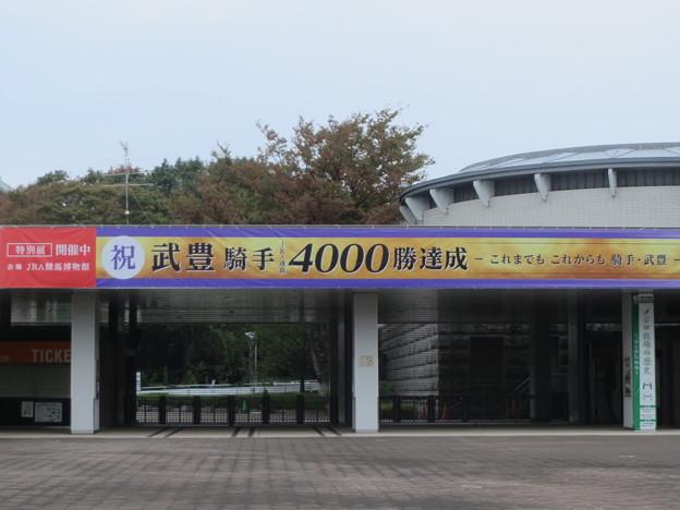 東京競馬場 東門