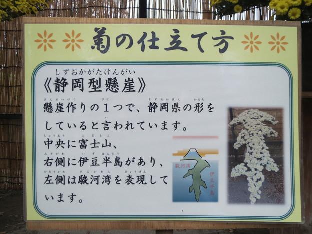 静岡型懸崖