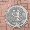 Photos: 熊取町のマンホール蓋