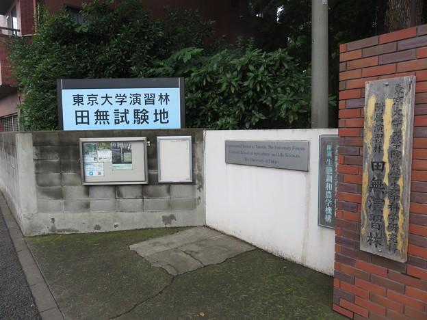 東京大学演習林田無試験地