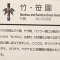 神代植物公園の「竹・笹園」
