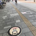 Photos: ケヤキ並木歩道のマンホール蓋