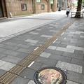 ケヤキ並木歩道