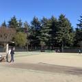 野川公園テニスコート