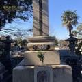 掃苔・多磨霊園 西郷従道の墓