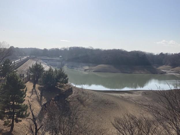 Photos: 多摩湖・上貯水池2