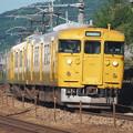 Photos: 115系 G-05編成