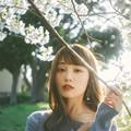Photos: 花風