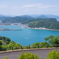 写真: 日南
