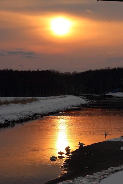 河畔の黄昏1