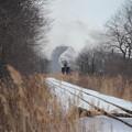 写真: SL冬の湿原号 来た!